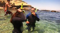 Snorkel Adventure Tour at La Jolla Cove, La Jolla, Snorkeling