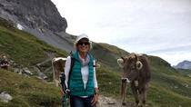 Grindelwald Guided Day Hike