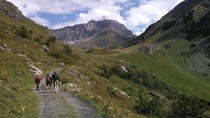 In the Heart of the Alps Hike Tour From Lucerne, Lucerne, Hiking & Camping