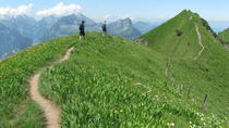 Private Full-Day Alpine Ridge Hiking Tour from Lucerne, Lucerne, Hiking & Camping