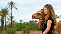 3 DAYS DESERT TOUR FROM CASABLANCA, Casablanca, Cultural Tours