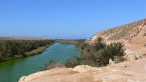 Agadir to Massa excursion: Desert and Sea - Agadir Day Trip , private excursion, Agadir, Cultural...