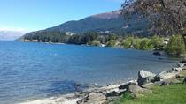 Tour privato o trasferimento a Queenstown, Christchurch, Private Sightseeing Tours
