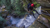 Small-Group Full-Day Canyoning and Abseiling Adventure from Katoomba, Blue Mountains, Climbing