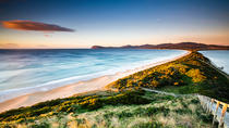 Full-Day Guided Bruny Island Tour from Hobart, Hobart, Day Trips