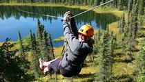 3-Hour Small-Group Guided Boreal Forest Zipline Tour in Alaska, Denali National Park, Ziplines