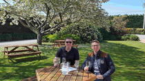 Half Day Martinborough Winery Tour from Wellington, Wellington, Wine Tasting & Winery Tours
