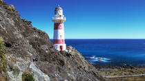 Martinborough Wein und Wild Coast Tour von Wellington, Wellington, Wine Tasting & Winery Tours