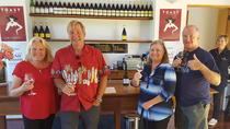 Martinborough Winery Private Tour, Wellington