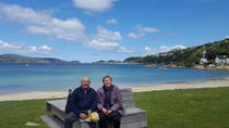Scenic Shore Excursion of Wellington Highlights Tour, Wellington, Ports of Call Tours