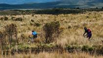 Antisana Bikes, Quito, Bike & Mountain Bike Tours