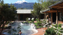 Small-Group Tour to Papallacta Hot Springs from Quito, Quito, Private Day Trips