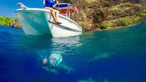 Captain Cook, Sea Cave and Dolphin Snorkel Excursion, Hawaii, Snorkeling