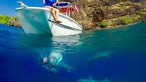Kona Private Charter Ocean Adventure, Big Island of Hawaii, Catamaran Cruises