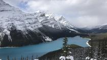 Lake Louise and the Icefield Parkway sightseeing tour, Banff, Day Trips