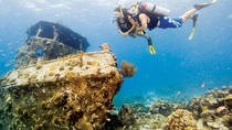 2-Tank Deep Wreck and Shallow Reef Dives from Waikiki, Oahu, Scuba Diving