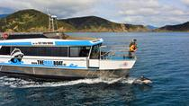 Marlborough Sounds Mail Boat Cruise Havelock, Blenheim, Day Cruises