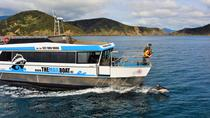 Small Group Half Day Mail Boat Cruise from Havelock, Blenheim, Day Cruises
