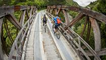 Remutaka Cycle Trail Highlights Tour from Wellington, Wellington, City Tours