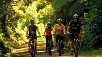 Rimutaka Rail Trail Cycle Tour from Wellington, Wellington, Bike & Mountain Bike Tours