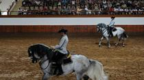 Full-day Jerez and Cadiz from Seville, with Horse Ballet and Sherry Tasting, Seville, Wine Tasting ...