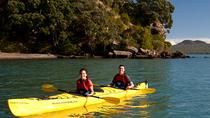 Half day kayak tour to Motukorea island, Auckland, Kayaking & Canoeing