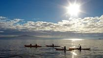 Sunset kayak tour to Rangitito Island, Auckland, Kayaking & Canoeing