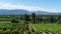 4-Hour Okanagan Valley Wine Tasting Tour of the Kelowna Lakeshore Wine Route, Kelowna & ...