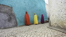 Harar via Awash National Park Private Tour, Addis Ababa, Attraction Tickets