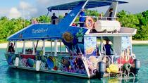Full-Day North Efate Snorkeling Adventure from Port Vila, Port Vila, Snorkeling