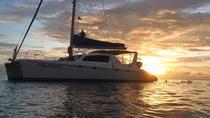 Afternoon Luxury Catamaran Sailing and Charter Cruise from Bridgetown, Barbados, Catamaran Cruises