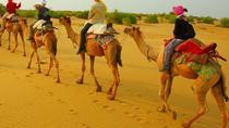Half Day Overnight Camel Safari (Non Touristic), Jaisalmer, Nature & Wildlife
