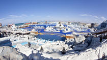Full-Day Entrance Tickets to Ice Land Water Park in Ras Al Khaimah, Ras Al Khaimah, Water Parks