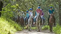 HORSEBACK RIDING, Sámara, Horseback Riding