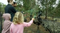 Full-Day Nature Tour from Perth, Perth, Full-day Tours