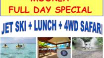 Moorea Jet Ski Tour, Lunch at Moorea Beach Cafe and 4WD Tour, Moorea, Day Trips