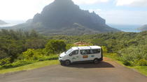Private Tour of Moorea by Air-Conditioned Minivan, Moorea