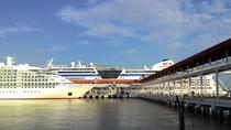 Kuala Lumpur Cruise Excursions from Port Klang Cruise Terminal to KL Tour, Kuala Lumpur, Ports of ...