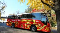 Seoul Combo: 2-Day Hop-on Hop-off Bus Tour (Downtown Palace Course and Panorama Course), Seoul, ...