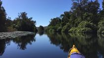 3 Day Self-Guided Noosa Everglades Kayak Tour, Noosa & Sunshine Coast, Multi-day Tours