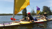 Full-Day Guided Noosa Everglades Kayak Tour, Noosa & Sunshine Coast, Kayaking & Canoeing