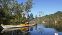 Self-Guided Noosa Everglades Kayak Tour, Noosa & Sunshine Coast, Kayaking & Canoeing