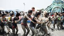Boryeong Mud Festival from Seoul, Seoul, Concerts & Special Events