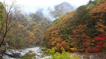 Breathtaking Autumn at Seoraksan National Park, Seoul, Day Trips