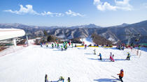 Elysian Ski with Nami Island One Day Tour, Seoul, Ski & Snow