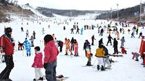 Enjoy Korean Winter at Eden Valley Resort One Day Tour, Busan, Ski & Snow