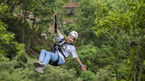 Exciting Yongin Zipline and Everland One Day Tour, Yongin, Cultural Tours