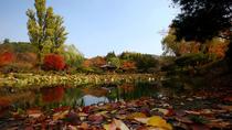 Full-Day Gyeongju Tour From Busan, Busan, Day Trips