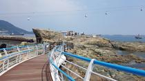 Full-Day Tour of Busan by Rail and Bike