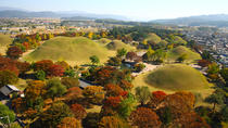 Historic and Natural Beauty- Gyeongju Autumn Foliage Day Tour, Gyeongju, Cultural Tours